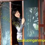 Cửa lưới chống muỗi cho Miền Tây Nam Bộ