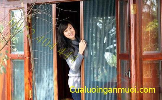 cua_luoi_chong_muoi_tai_thanh_pho_Ho_Chi_Minh